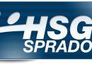 Staffeleinteilung: HSG I bekommt 4 neue Gegner
