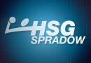 Mitmachen HSG-Familie: Stimme abgeben